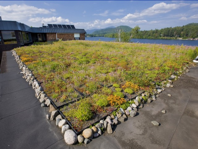 Generations green roof herb garden. Lake Placid, NY #VisitADK #Adirondacks @GetawayMaves