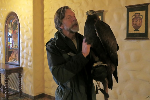 Naturalist and Falconer Jack Hubley holding large hawk in his gloved hand