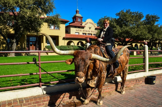 Woman astride a Texas Longhorn in Fort Worth, Texas.
