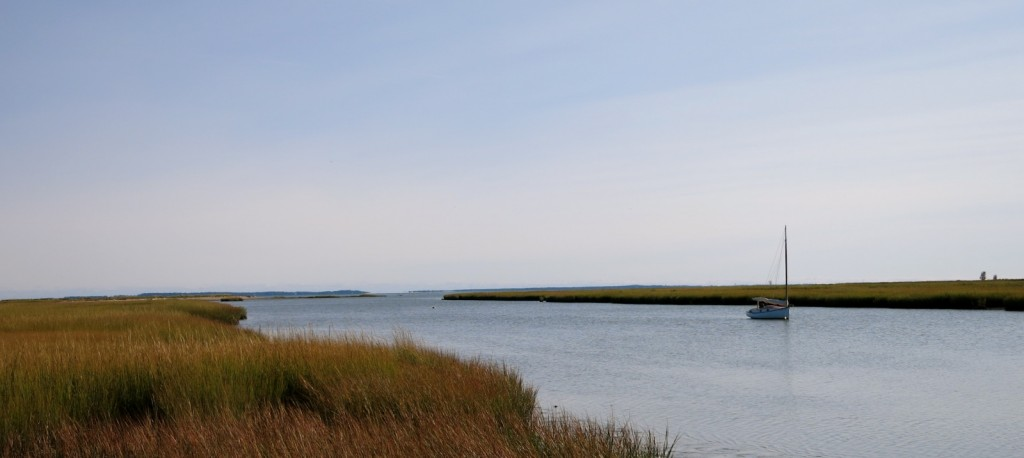 View of Lieutenant River from Smith Neck Rd. Old Lyme CT