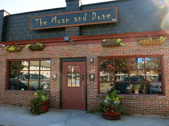 The Moan and Dove, the place for high end beer and free peanuts, Amherst MA