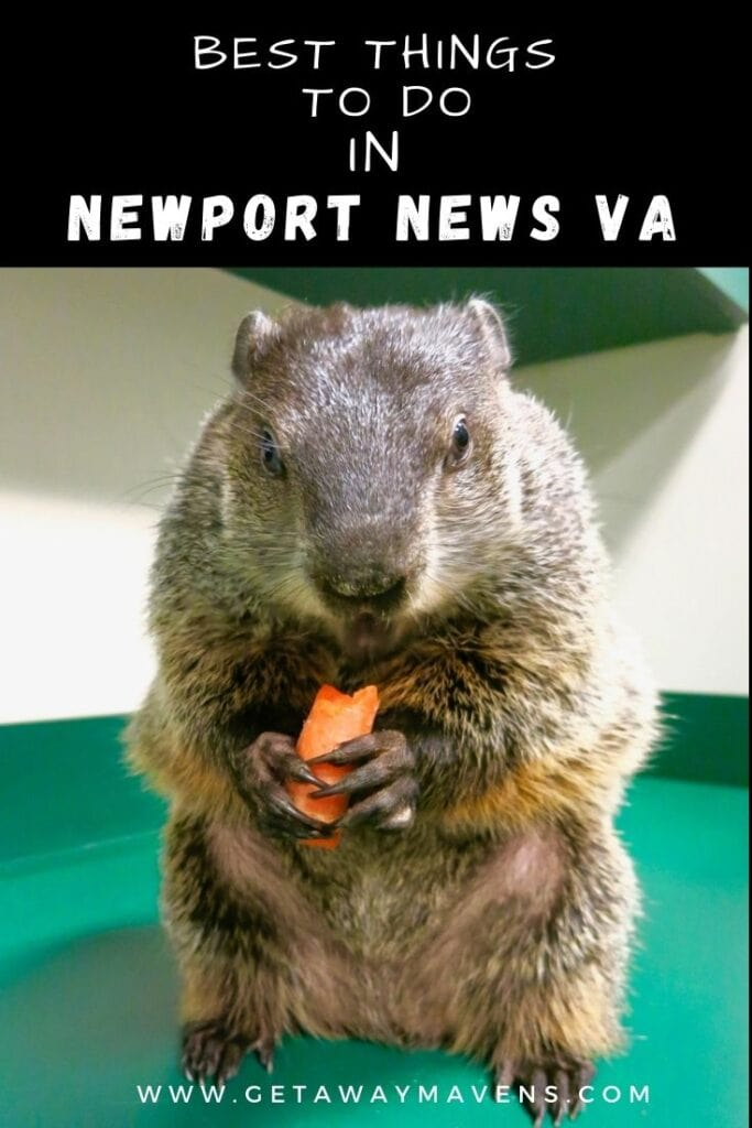 Newport-News-VA-Best-ThingsPin
