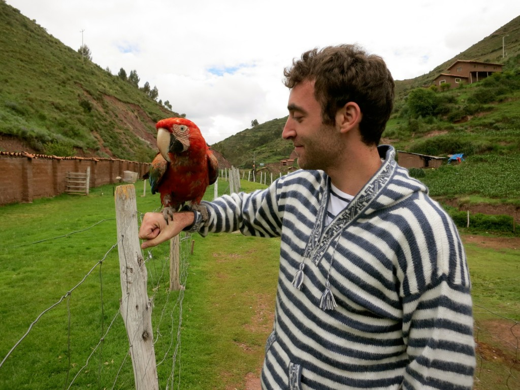 Animal-Sanctuary-Cusco-Peru