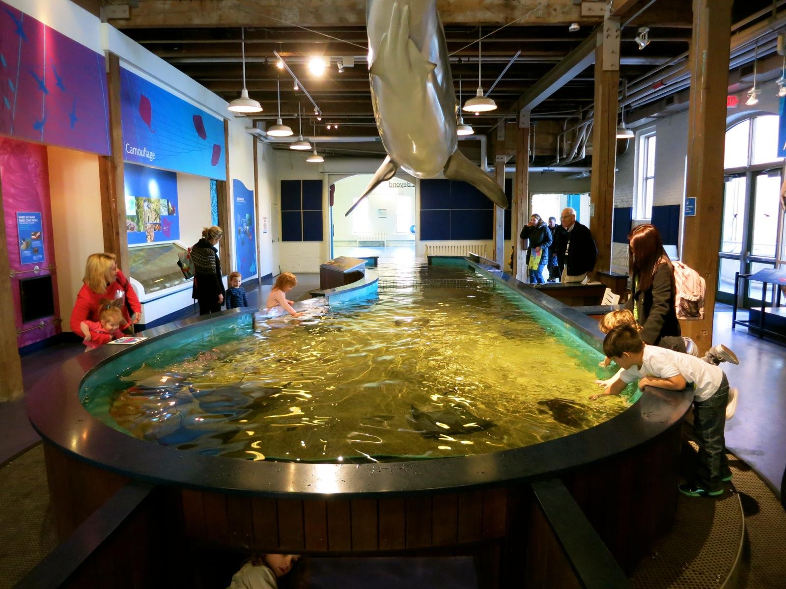 Norwalk Aquarium Related Keywords & Suggestions - Norwalk Aquarium ...
