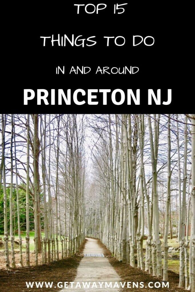 Princeton-NJ-Best-Things-Pin