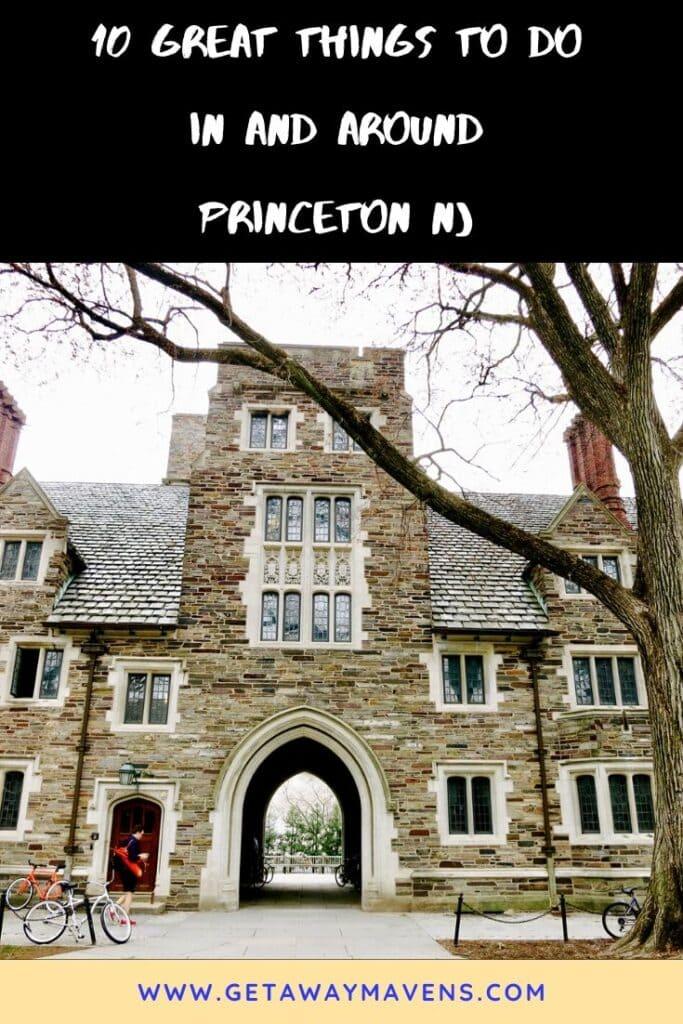 Princeton NJ Pin