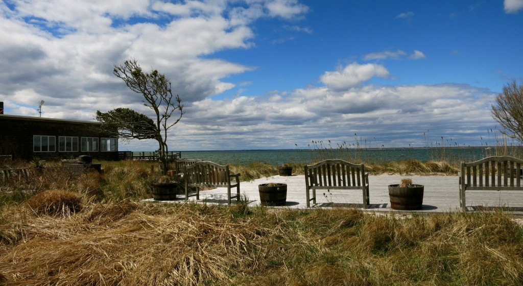 Bay view, Fire Island NY