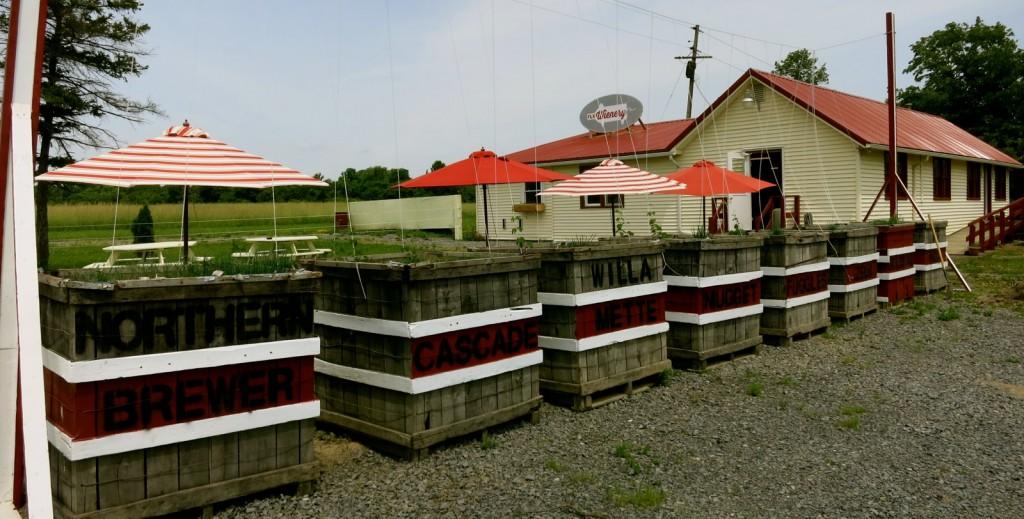 FLX Weinery, Seneca Lake NY