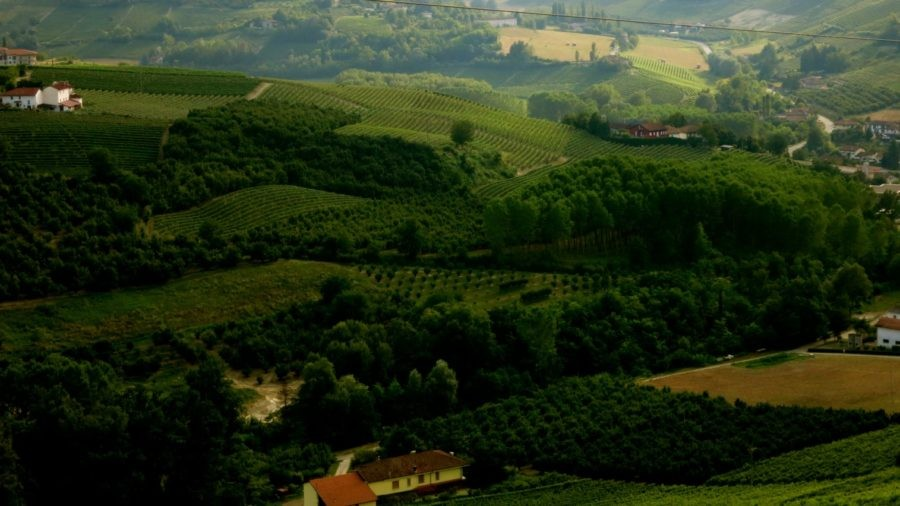 Piedmont Region of Italy Is Like Tuscany Forty Years Ago