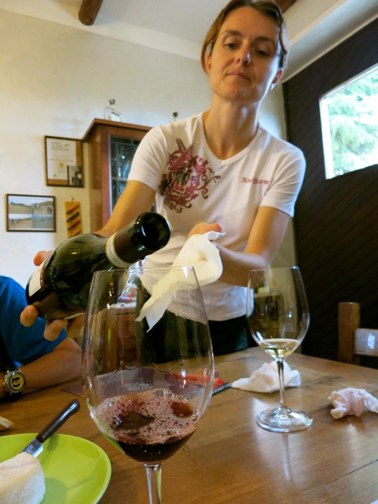Wine Tasting Paired With Homemade Italian Dishes