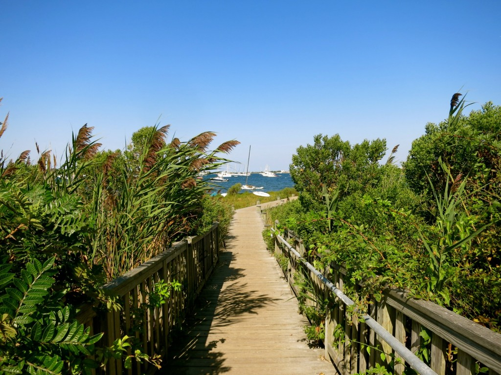 Boardwalk from Corn Neck Road to Great Salt Pond
