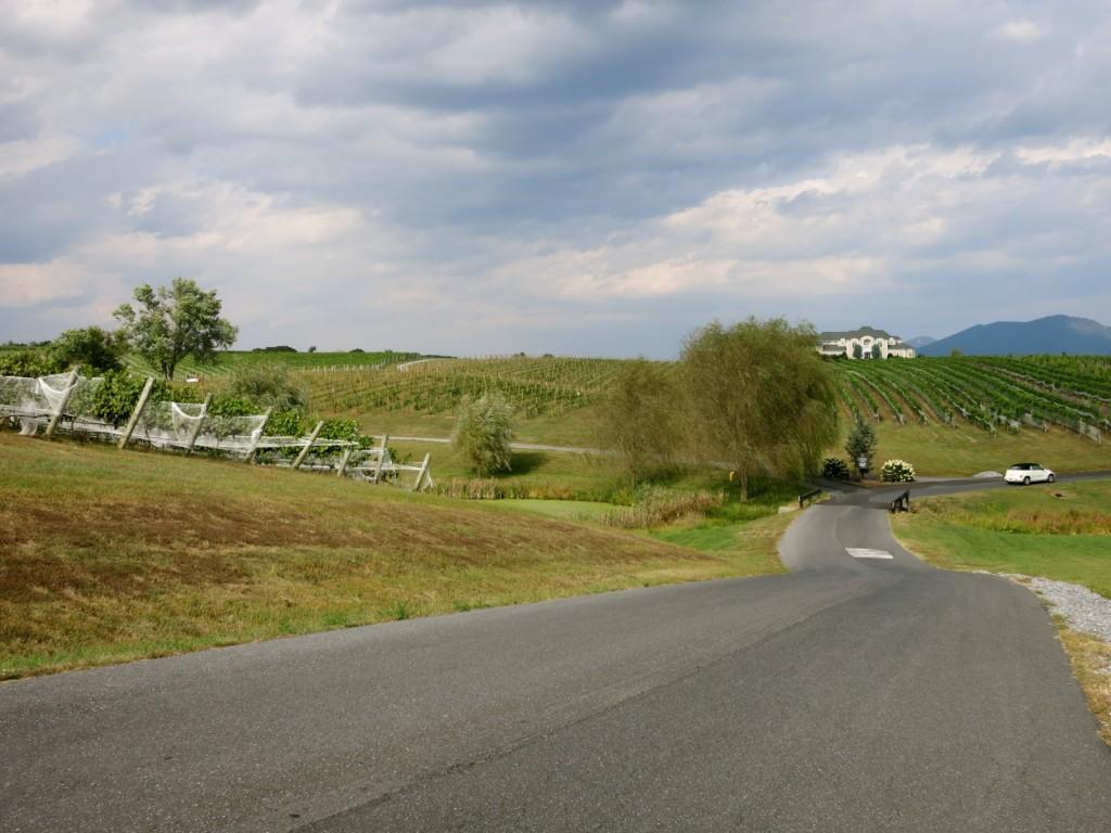 CrossKeys Vineyard