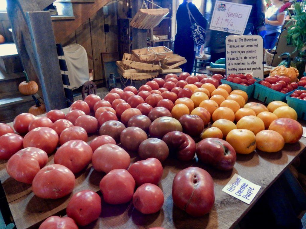 Organic heirloom tomatoes at Homestead Farm, Winchester VA