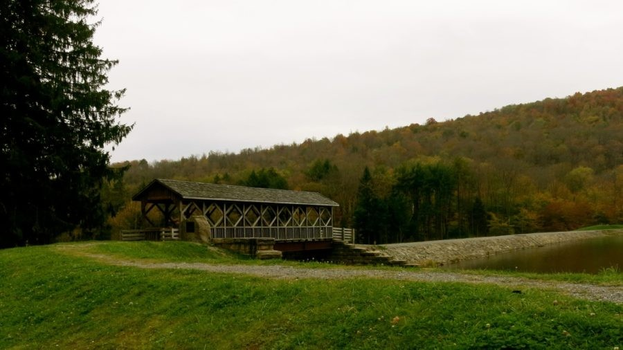 PA Wilds: Angling, Oil and Luxury in the Allegheny National Forest