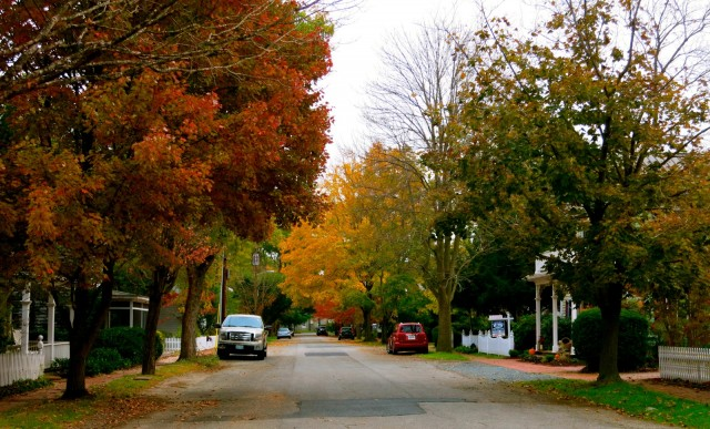 Oxford MD street in fall
