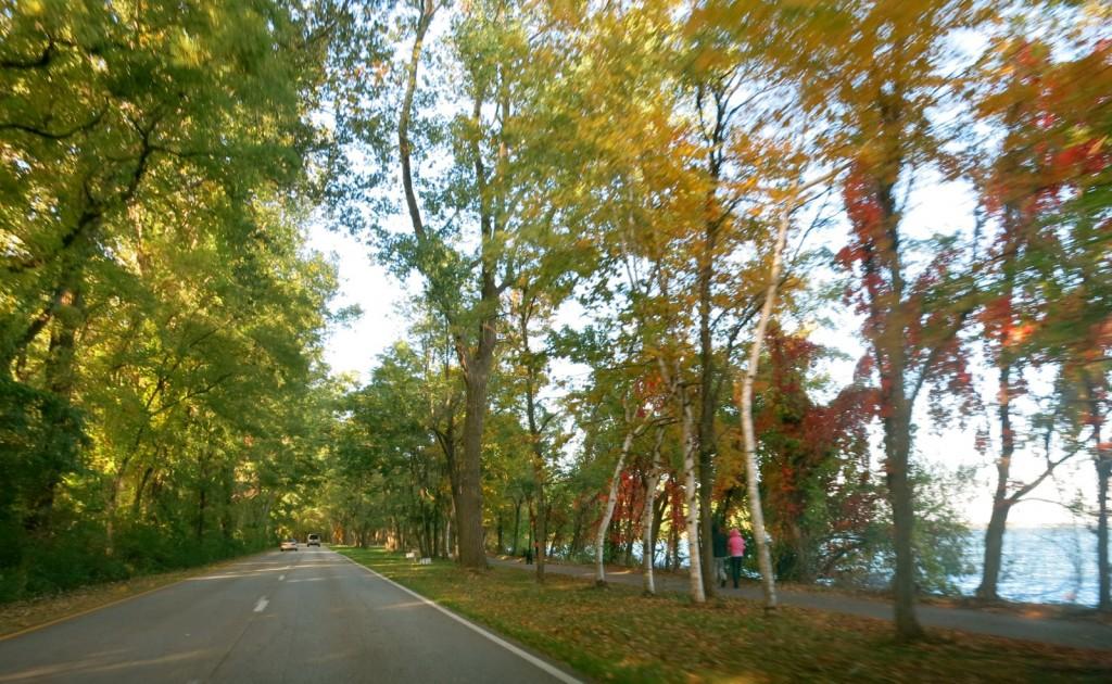 Presque Isle SP road