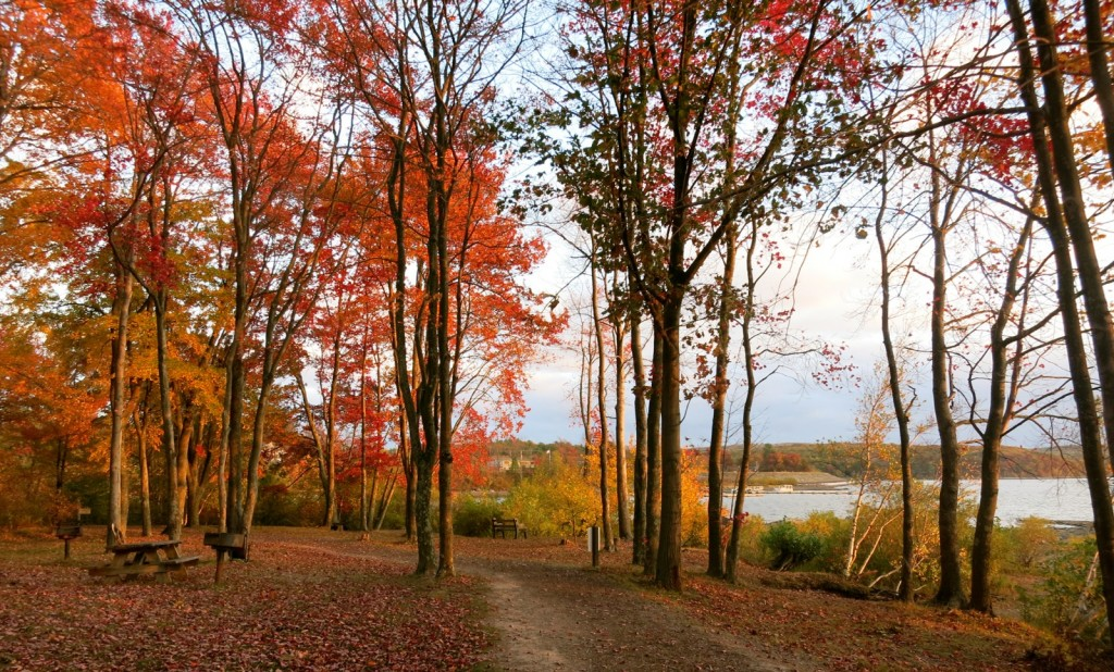 Wallenpaupack Lake Trail