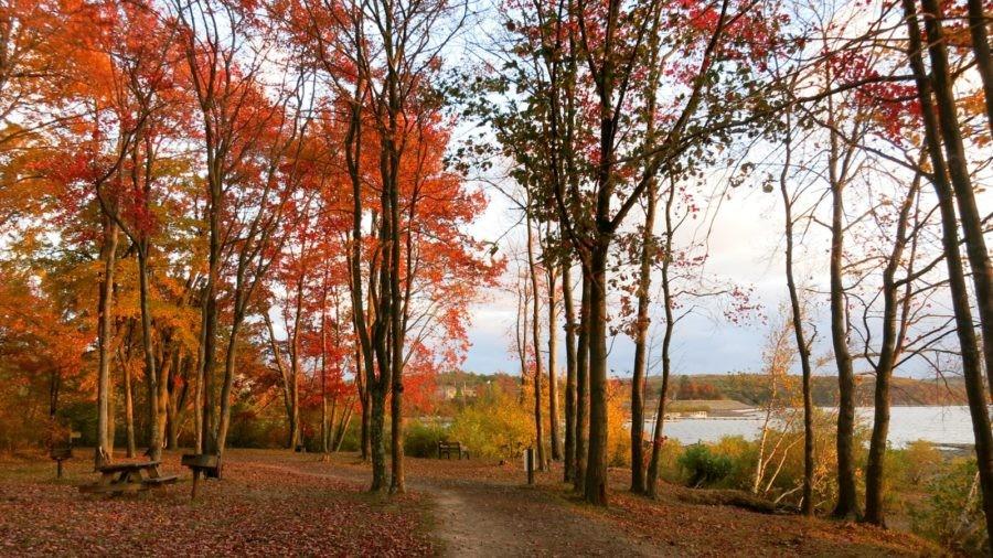 Hawley PA: Big Lake, Small Town Charms