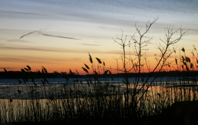 Old Saybrook Sunset