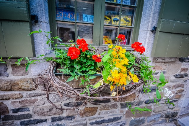 Window Box - Quebec City