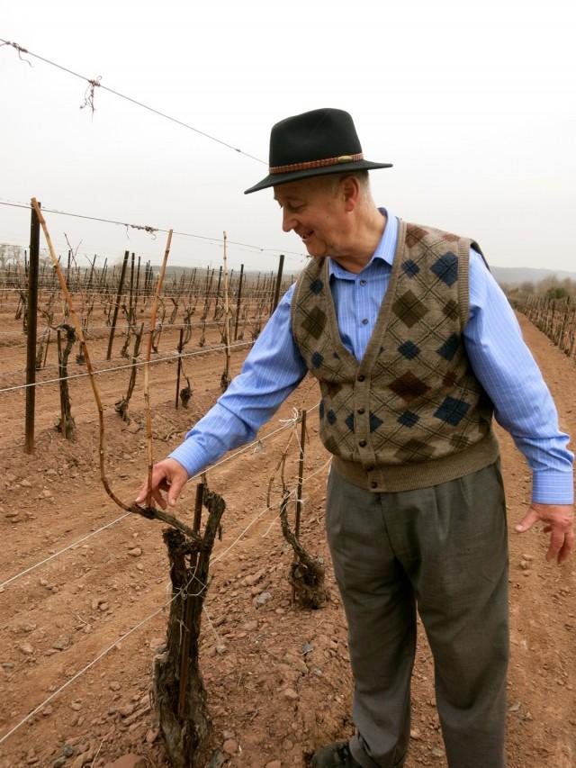 Joe M. owner, Sand Castle Winery PA