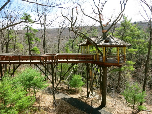 Tree House in Nay Aug Park, Scranton PA