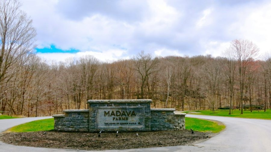 "Madava Farms, Home of Crown Maple Syrup, Dover Plains NY: Open Select ""Maple Weekends"""