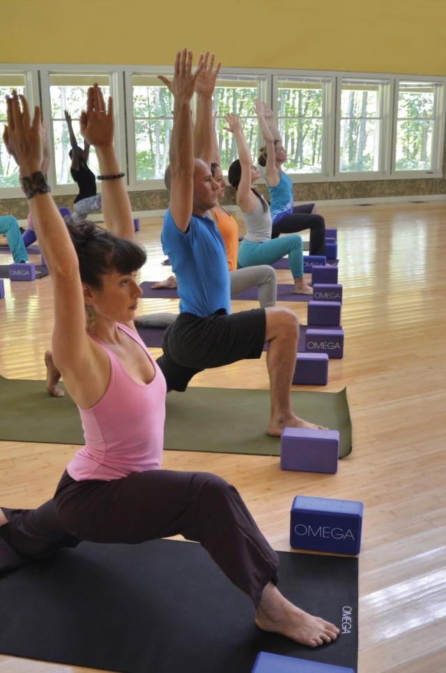 Yoga_Omega