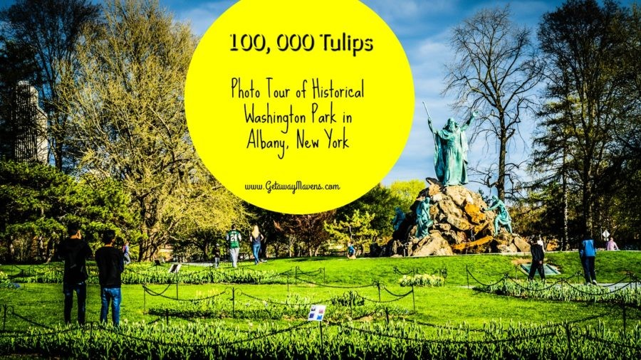 Washington Park #Albany #NY - Albany, NY's tulip fest is a colorful celebration of Dutch heritage and imaginative communal space. @GetawayMavens