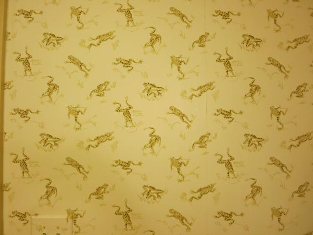 Frog Wallpaper in Bathroom