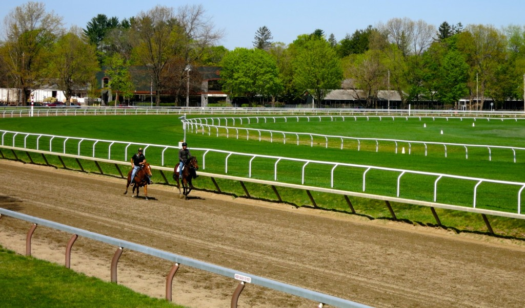 Saratoga Race Track Morning Training