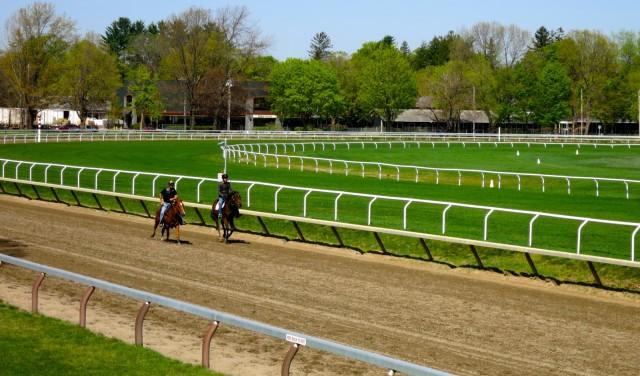 Saratoga Race Track Morning Training