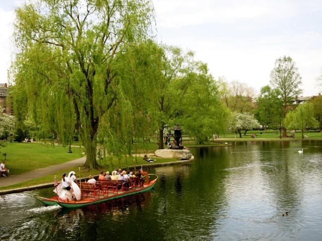Swan Boats Boston MA