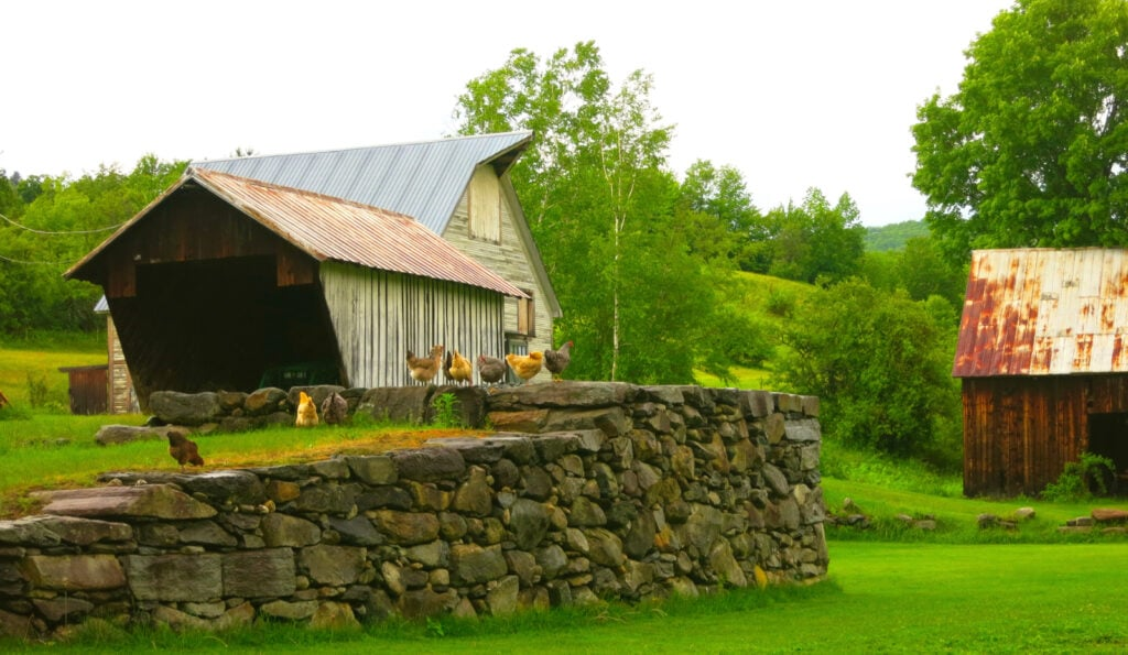 Farmhouse Inn at Robinsons Farm Property Woodstock VT