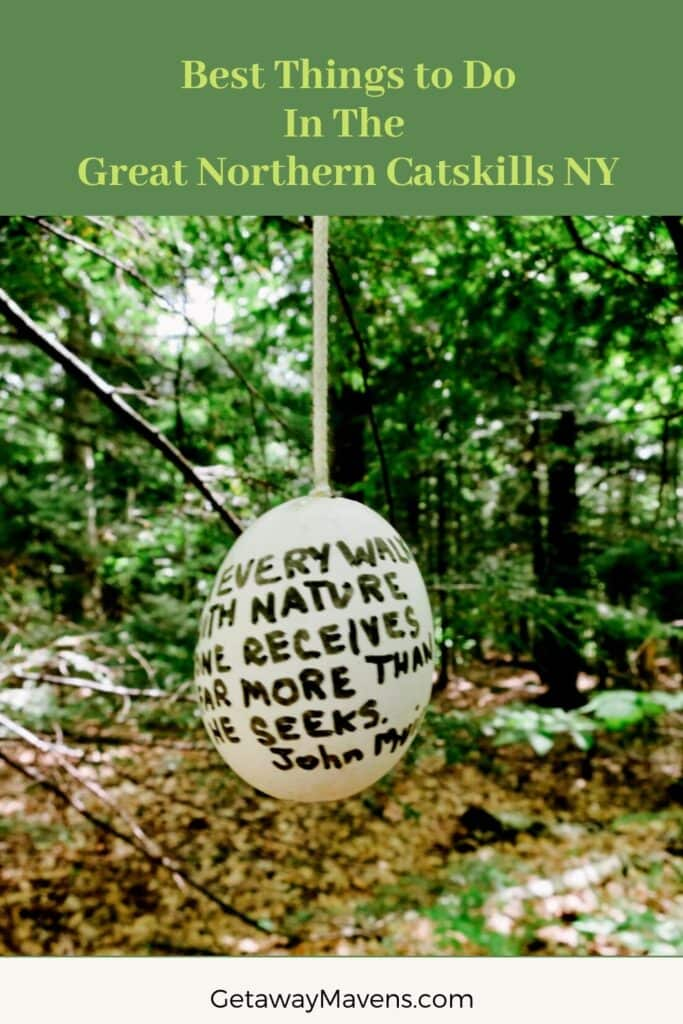 Great Northern Catskills Pin