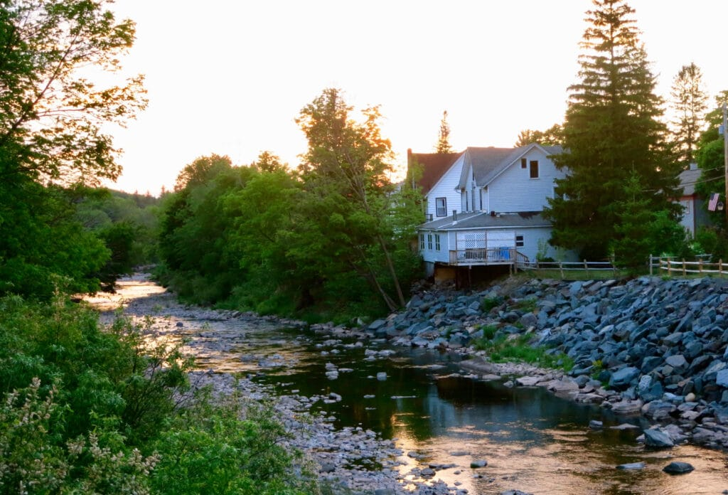 Great Northern Catskills Stream