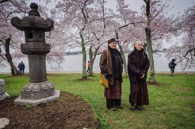 Tibetan Monks posing with Cherry Blossoms