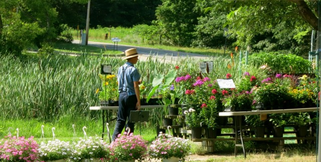 Amish Farmers Market, St. Mary's County MD