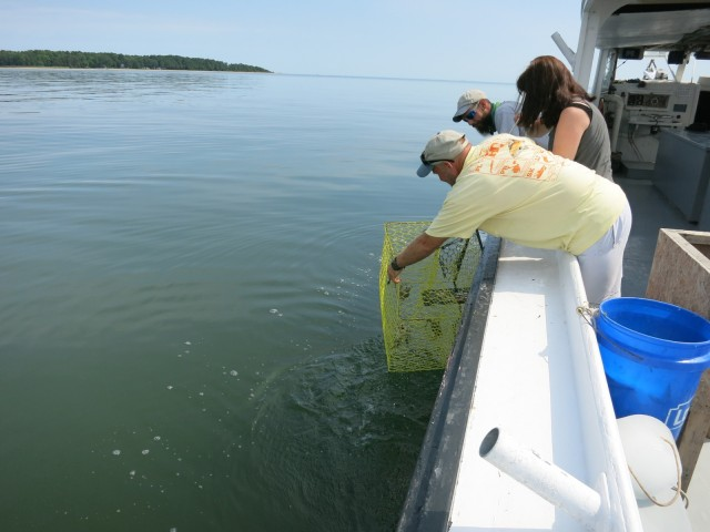 Pulling crab pots, St. Mary's County MD