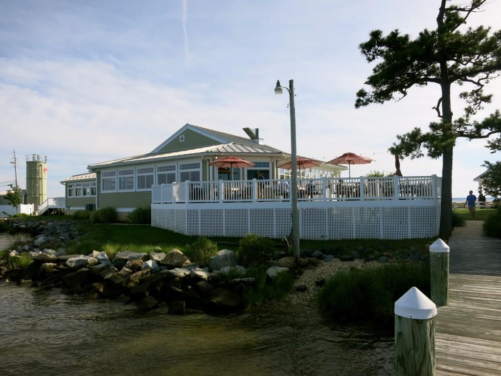Ruddy Duck, St. George Island, MD