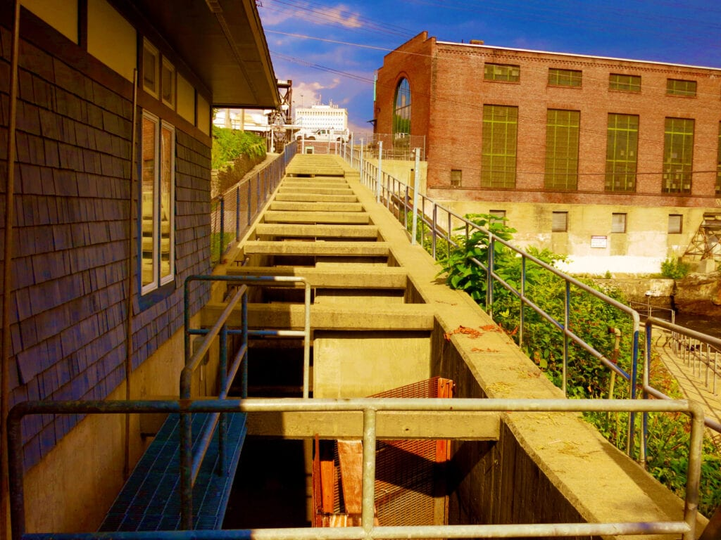 Fish Ladders Manchester NH