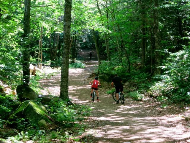 Mountain Biking, Waterville Valley NH