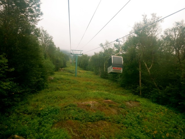Wildcat Gondola Ride, NH