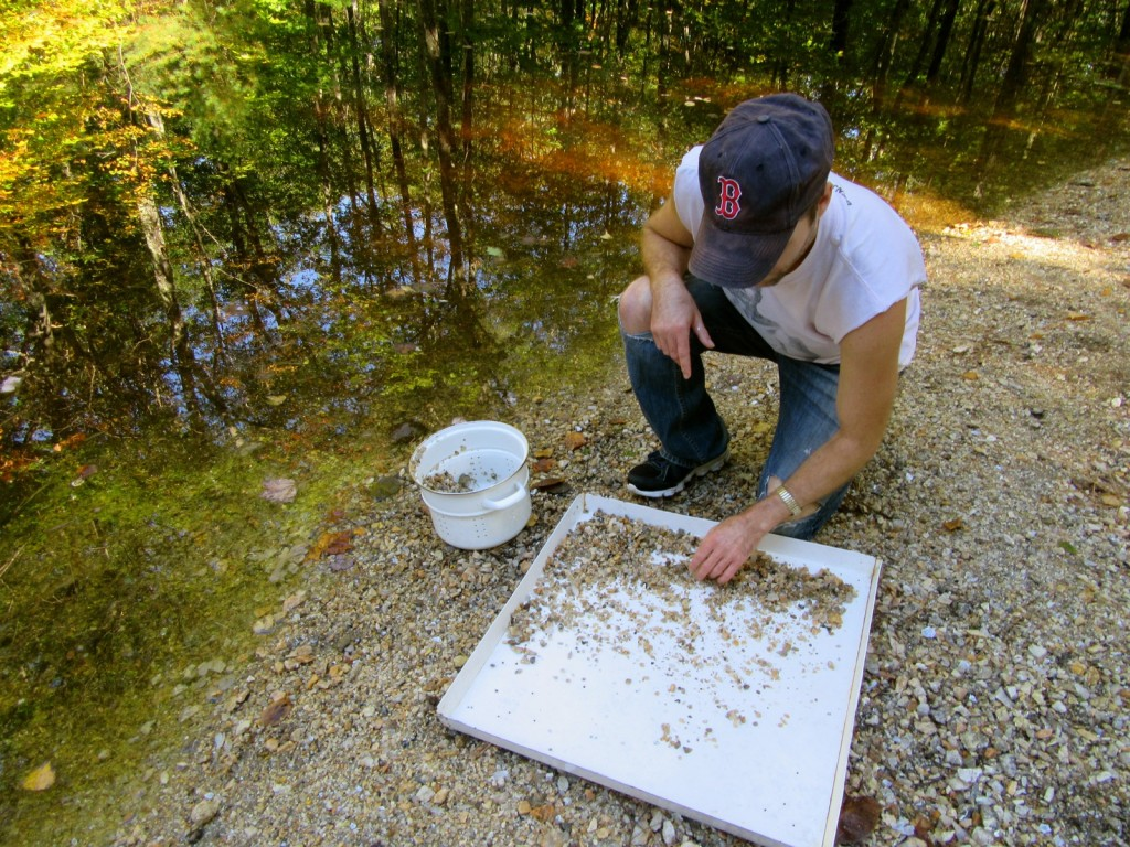 Panning for gemstones, Mt Apatite SP, ME