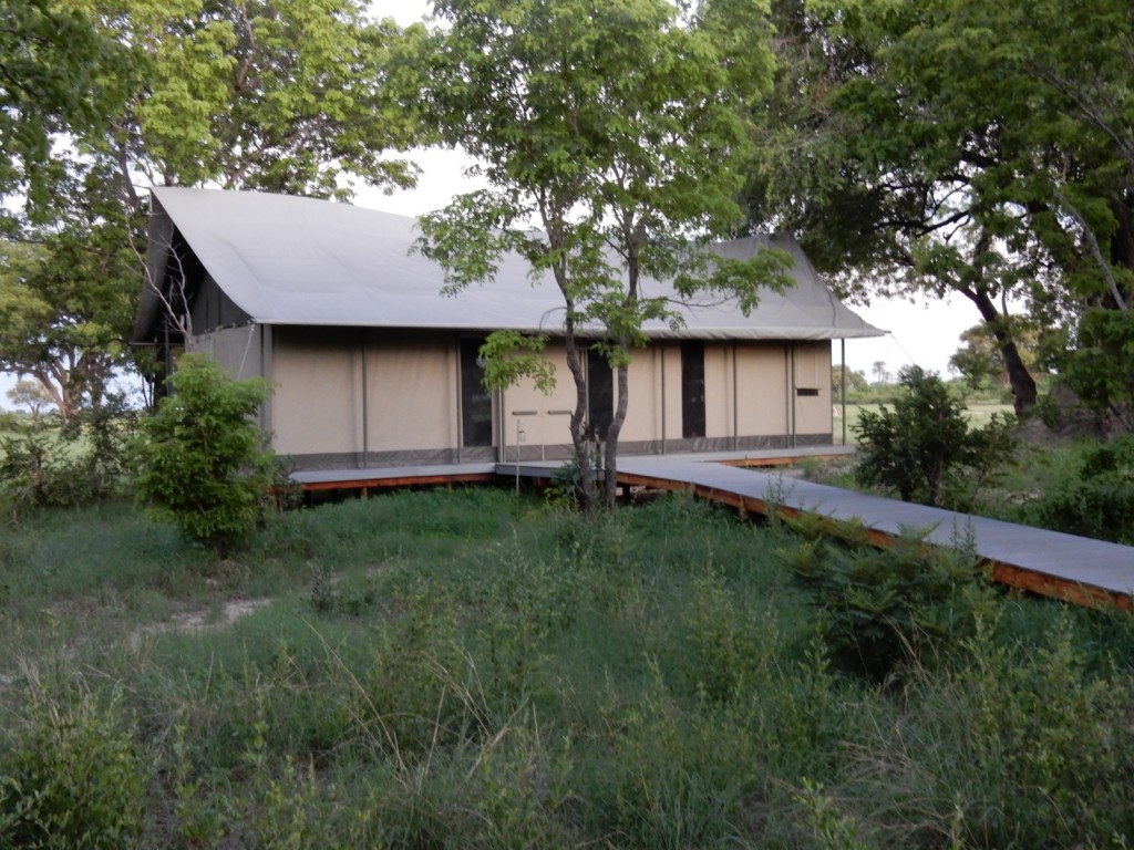 Canvas cabin, Linkwasha Camp, Zimbabwe