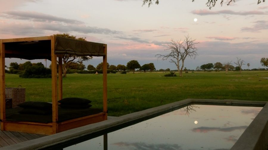 Linkwasha Camp, Hwange National Park, Zimbabwe: Boutique in the Bush