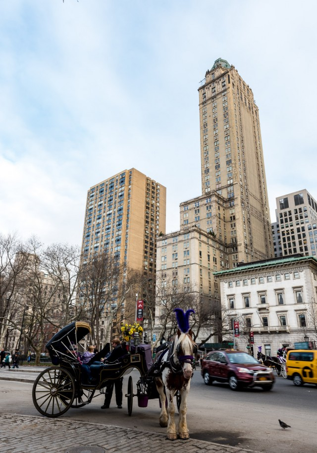 """The Pierre Hotel, now part of the India-based luxury hotel group Taj, sits on what is arguably the most photographed and filmed slice of New York City– the south east corner of Central Park. Within steps of Central Park Zoo, the Wollman Skating Rink, the Plaza Hotel and a slew of here now, possibly gone tomorrow horse-drawn carriages, the Pierre is the epitome of """"Romantic New York"""" – quiet, lavish without being showy, and eminently elegant – all with that rare commodity: a friendly, anticipatory human touch. (via www.GetawayMavens.com)"""