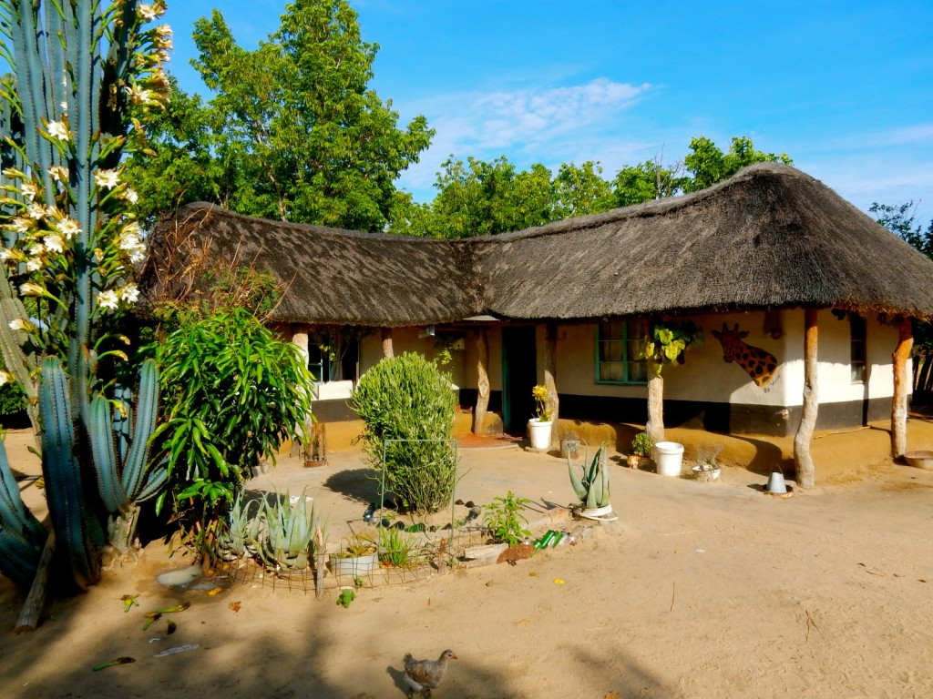 Village Headman homestead, near Hwange Park, Zimbabwe