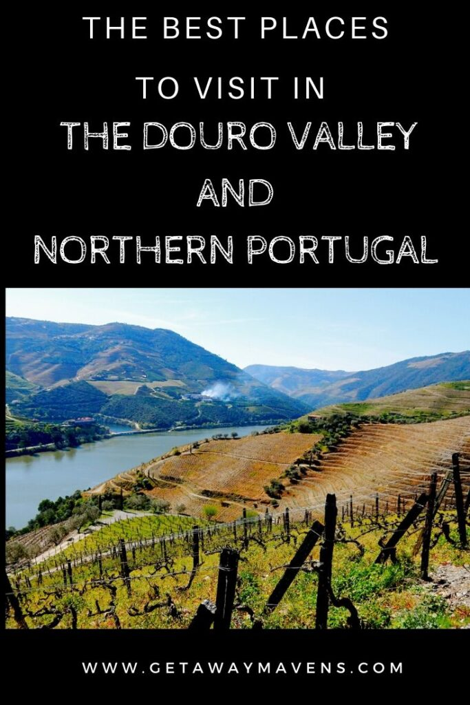 Douro Valley Portugal Pin