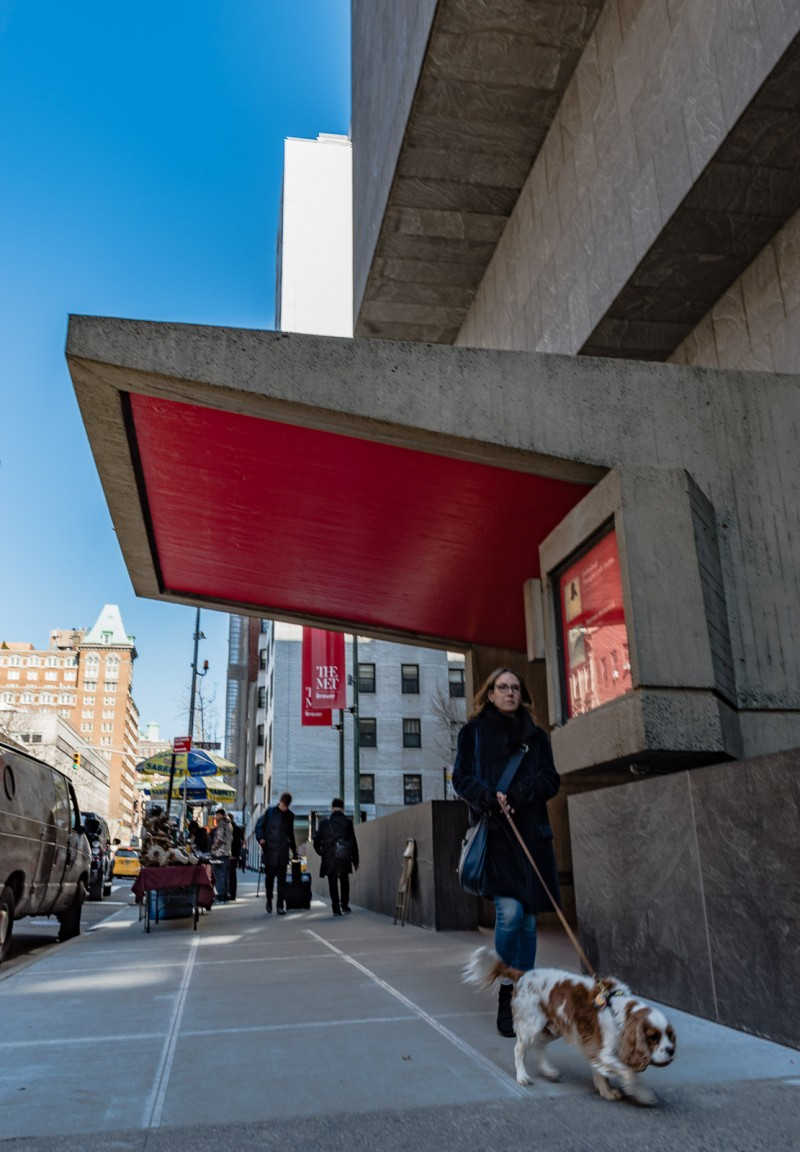 Woman walking Cocker Spaniel dog past red door entrance of The Met Breuer art museum.